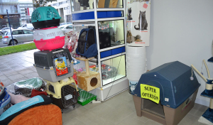 Casetas, trasportines, etc. de Animal SPA