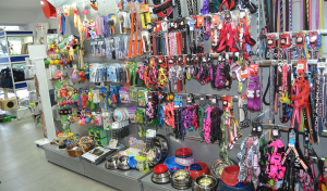 Correas, comederos, juguetes, etc. de Animal SPA